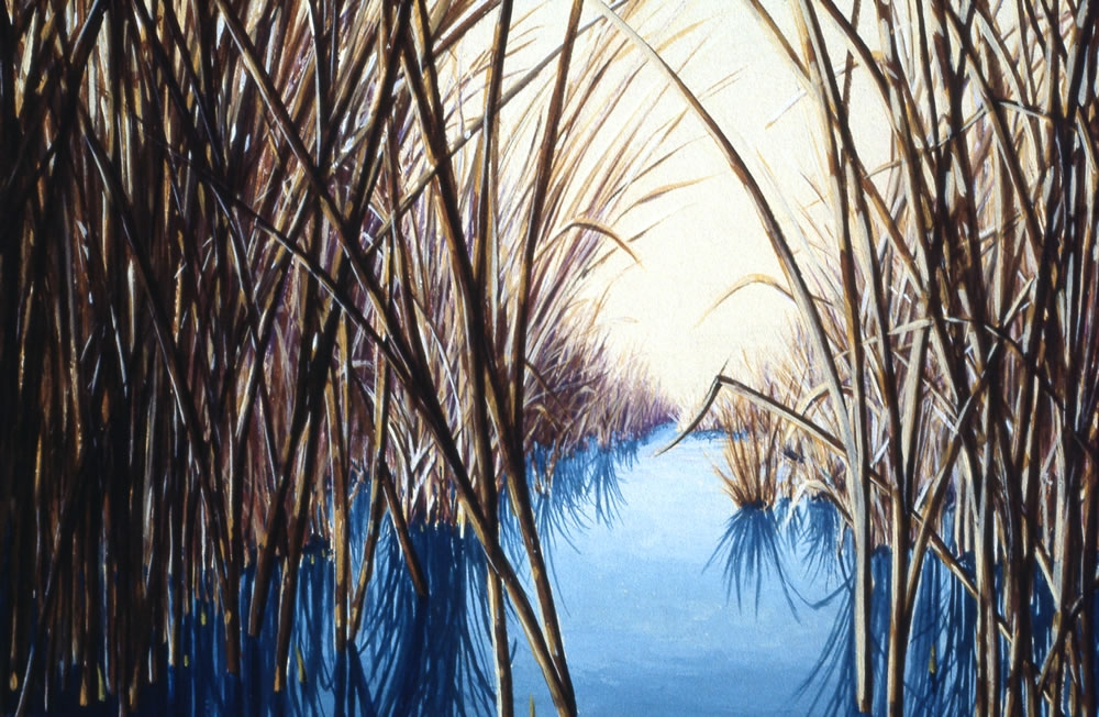 March Marsh - Detail